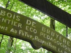 Sautin - Bois de Bruyère