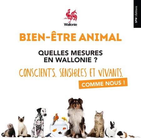 Brochure de vulgarisation du Code wallon du Bien-être animal